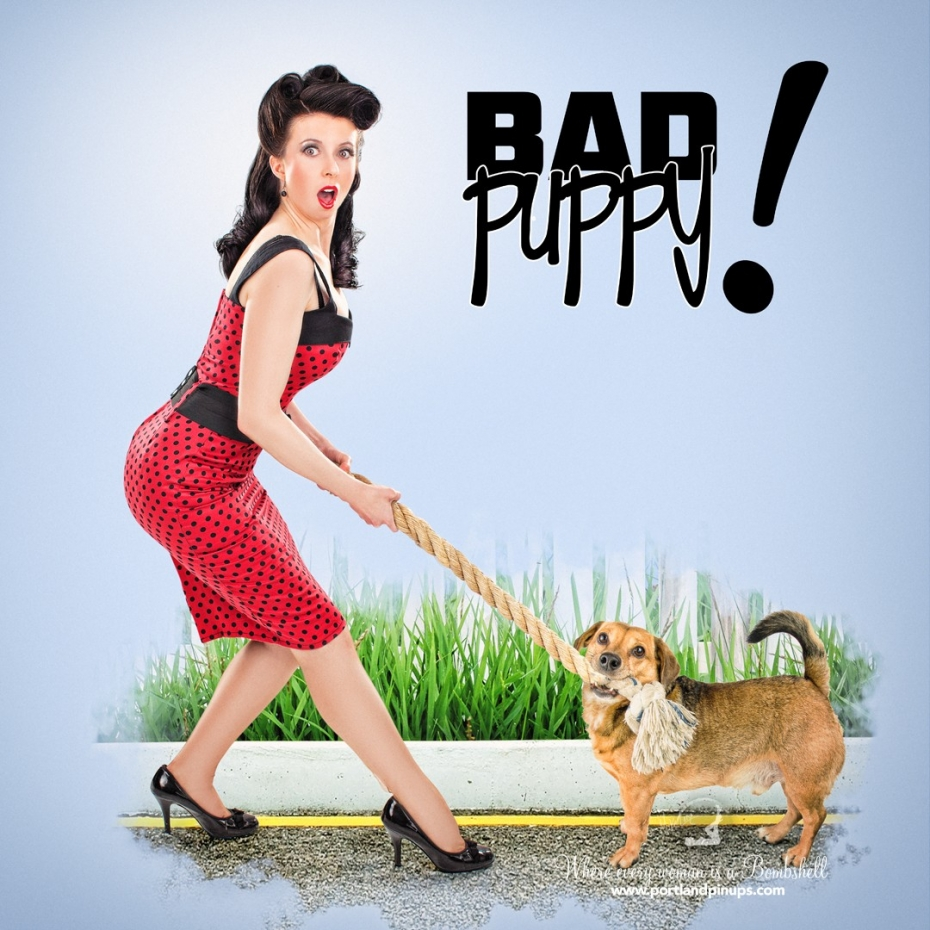 Bad Puppy!At Portland Pin-Ups, we believe that EVERY woman is a bombshell, and we love our clients! We appreciate that visiting a professional photographer is rare these days and thank you for choosing us to capture your beauty.Professional hair styling, make-up artistry, lighting, 20 years of posing experience and industry leading retouching...the Portland Pin-Ups Magic. It
