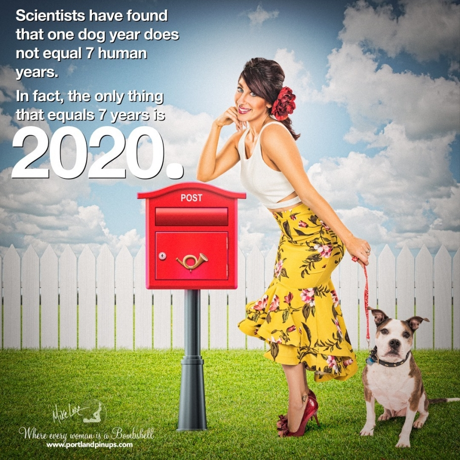 Scientists have found that one dog year does not equal 7 human years. In fact, the only thing that equals 7 years is 2020….Give 2020 a firm and solid middle finger… Upgrade Your Selfie with Portland Pin-Ups.